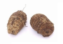 taro erddoes wurzel 1kg colocasia antiquorum asia food specialities. Black Bedroom Furniture Sets. Home Design Ideas